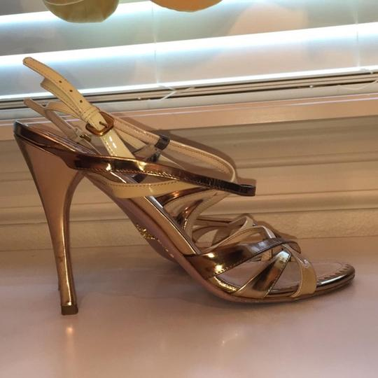 Prada Bronze / Neutral Formal