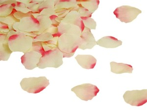 Pink & Ivory Rose Petals - Ceremony/ Table Decor Ceremony Decoration