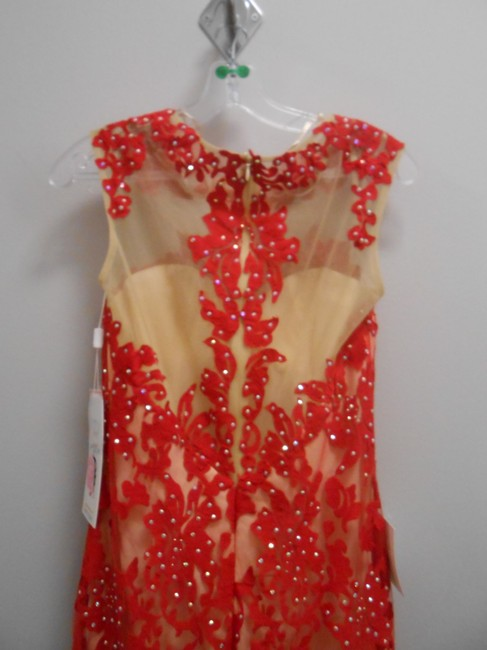 Other Prom Train Sheer Lace Dress