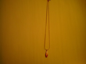 Other GOLDEN SHELL NECKLACE. BRAND NEW!!
