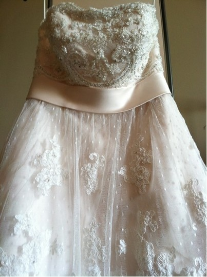 Casablanca Champagne Lace 1900 Feminine Wedding Dress Size 6 (S)