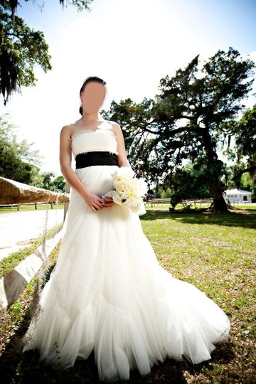 Vera Wang Ivory French Tulle Briana Traditional Wedding Dress Size 6 (S) Image 3