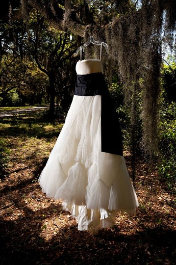 Vera Wang Ivory French Tulle Briana Traditional Wedding Dress Size 6 (S) Image 5