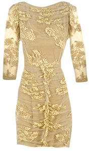 Burberry Prorsum Lace Fitted Sheer Dress