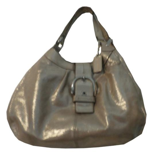 Preload https://item2.tradesy.com/images/coach-gold-metalic-leather-hobo-bag-5450491-0-0.jpg?width=440&height=440