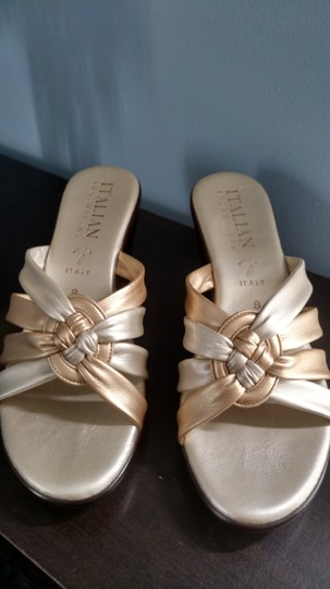 Other brown heel, gold and pewter color Sandals