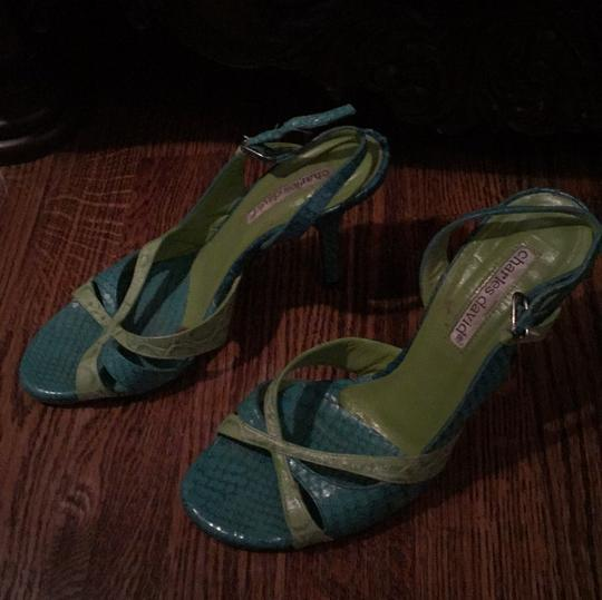 Charles David Green and turquoise Formal