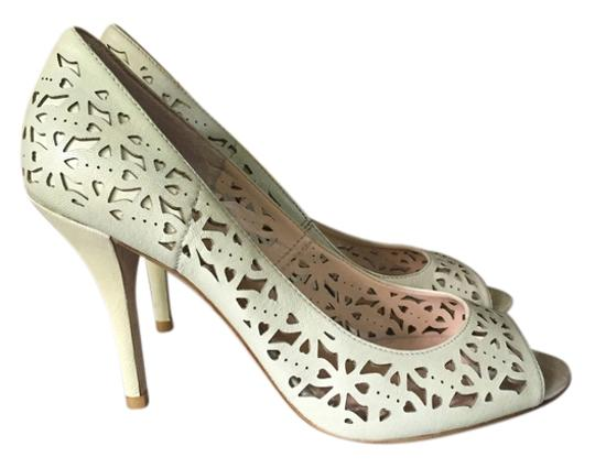 Preload https://img-static.tradesy.com/item/5531944/enzo-angiolini-tealsea-foam-green-floral-cutout-heels-pumps-size-us-8-regular-m-b-0-1-540-540.jpg