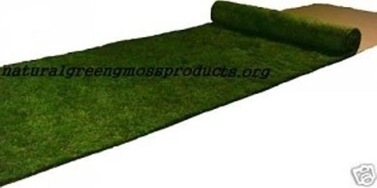 Green 3x20 Aisle Moss Runner