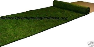 2'x16' Moss Runner Wedding Decorations Outdoor Indoor Rustic Shabby Chic Wedding Themed Woodsey Natural Green Moss
