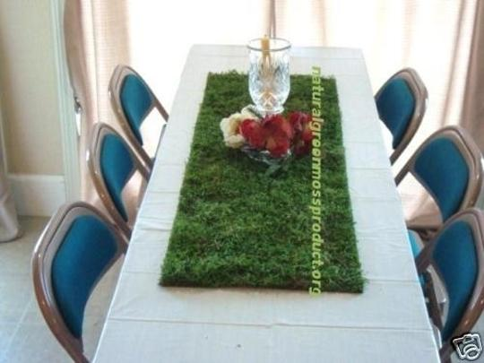 Preload https://item2.tradesy.com/images/green-4-moss-runners-16x48-table-decor-placemats-escort-natural-moss-preserved-banquet-cake-centerpi-55611-0-0.jpg?width=440&height=440