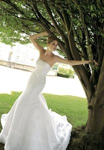 Pronovias Dagen Wedding Dress