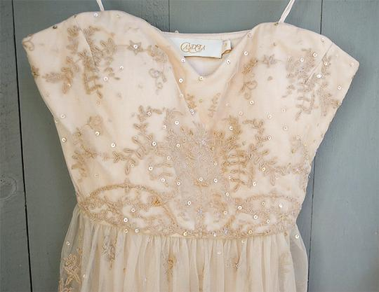 BHLDN Beige/Cream Rosecliff Gown Vintage Wedding Dress Size 2 (XS) Image 1