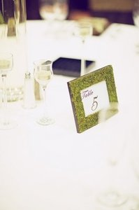 Green Moss Frame Table Numbers Tableware