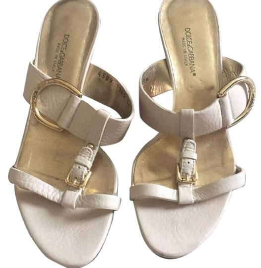 Preload https://item3.tradesy.com/images/dolce-and-gabbana-light-beige-with-gold-buckles-438116336-wedges-size-us-6-regular-m-b-5645452-0-0.jpg?width=440&height=440