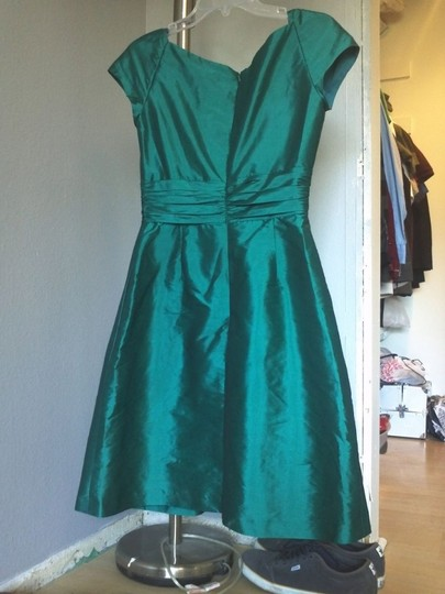 Alfred Sung Other D502 Traditional Bridesmaid/Mob Dress Size 8 (M)
