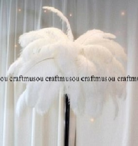 White Ostrich Feather 16-18 Inches 50 Pieces Centerpiece