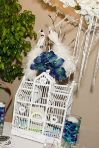Bird Cage For Money Cards With Bride & Groom