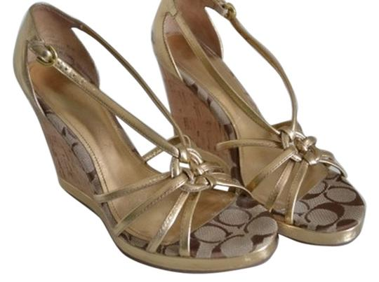 Preload https://item4.tradesy.com/images/coach-gold-leather-and-cork-wedges-size-us-85-regular-m-b-5834713-0-0.jpg?width=440&height=440