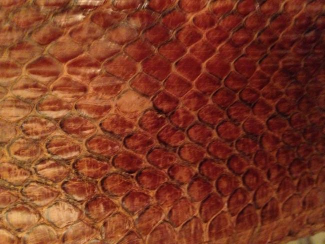 Other Real Snake Skin Trench Coat
