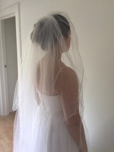 David's Bridal Starry Night Inspired Cathedral Veil With Swarovski Crystals