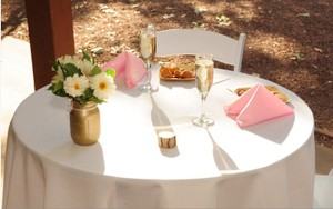 Light Pink 100 17 Inch Polyester Napkins Tableware