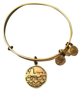 Alex and Ani Boston Charm Bangle