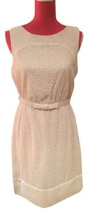 Max and Cleo short dress Beige Lace Cream on Tradesy