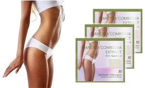 Other Garcinia Cambogia Extract Slimming Patches