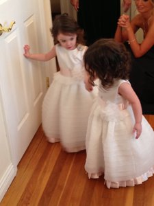 Ivory And Blush Joan Calabrese Flower Girl Dress Dress