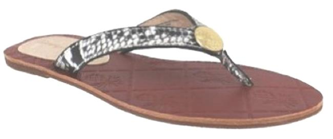 Tommy Bahama Grey Women's Havana Snake Leather Flip Flop Sandal Flats Size US 6 Regular (M, B) Tommy Bahama Grey Women's Havana Snake Leather Flip Flop Sandal Flats Size US 6 Regular (M, B) Image 1