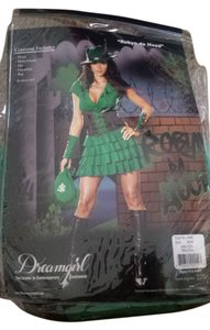 Dreamgirl Costume Halloween Robin Hood Dress