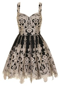 Chi Chi Lace Prom Textured Embroidered Embellished Skater Scalloped Dress