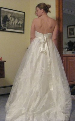 David's Bridal Preview Gown Discontinued Wedding Dress