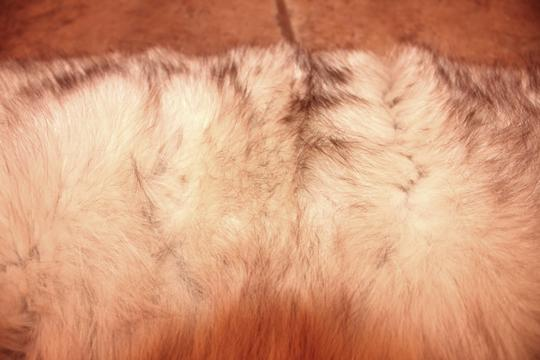 Other Like New VTG Silver Fox Fur Shawl, Stole, Shrug, Collar. Kept, Rich, Healthy, Thick fur.