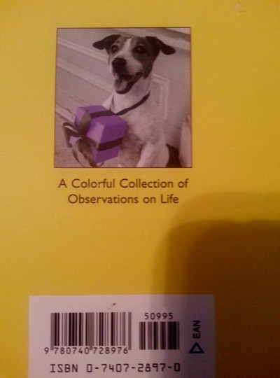 Meg Schutte HB Book: Because There's Color in a Black & White World Image 1