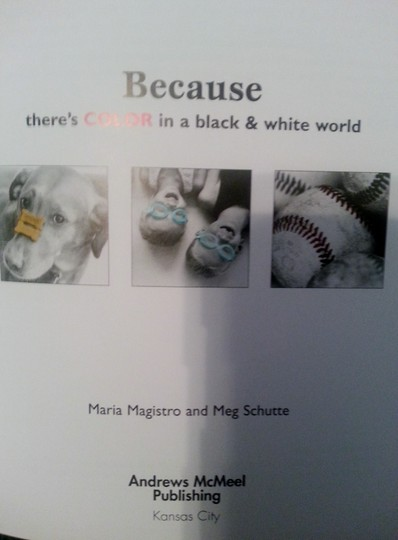 Meg Schutte HB Book: Because There's Color in a Black & White World Image 2