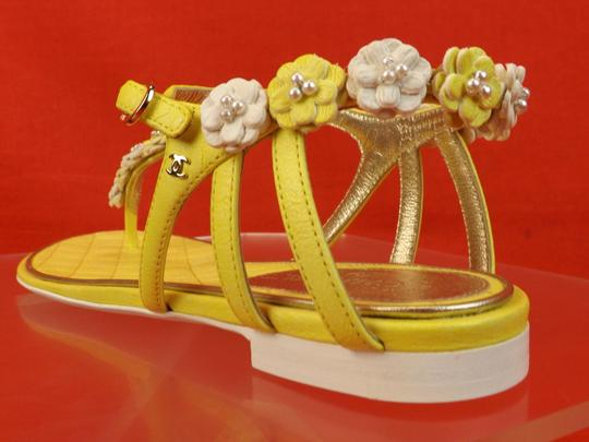 Chanel New In Box YELLOW Sandals Image 1