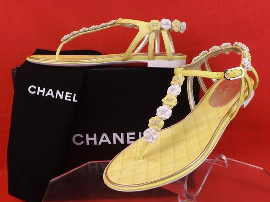 Chanel New In Box YELLOW Sandals Image 3
