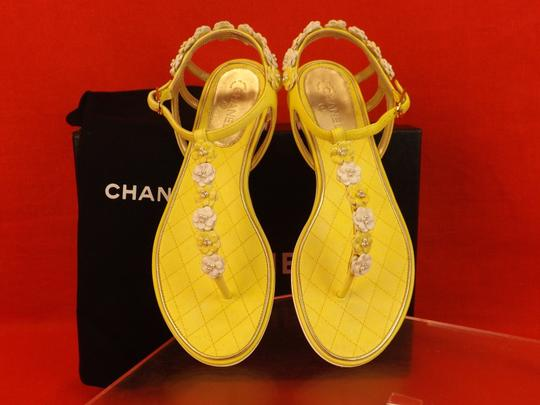 Chanel New In Box YELLOW Sandals Image 5