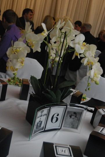 30 White Silk Orchid Centerpieces