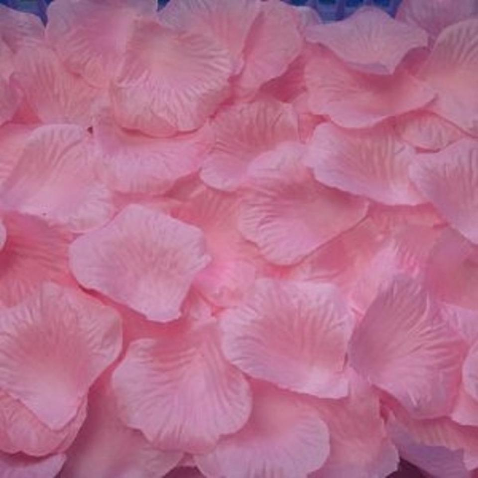 Pink 1000x Rose Petal 22 More Colors Available Flower Girl Basket