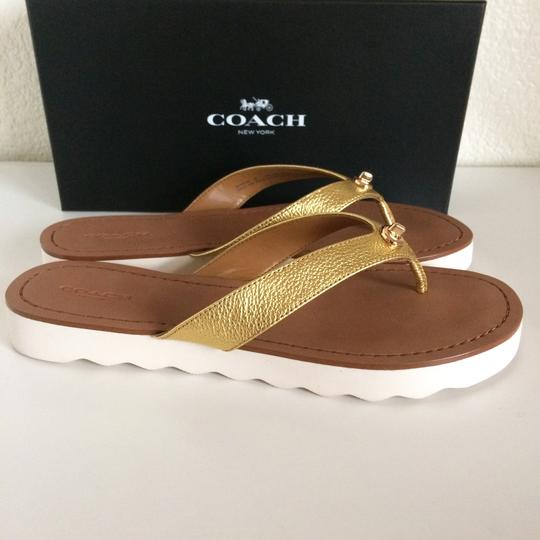 Coach Thong Slippers Gold Flats