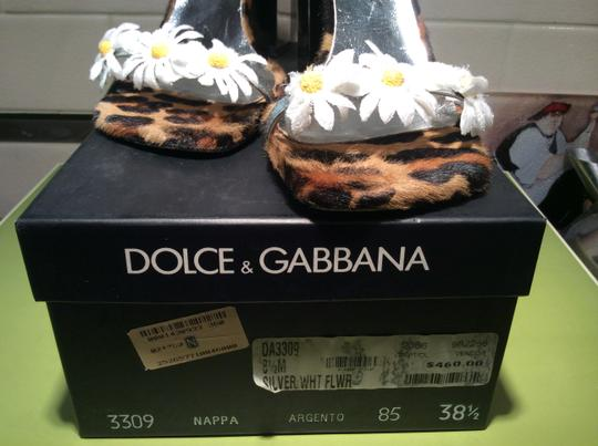 Dolce&Gabbana Mirrored Heels Silver With White Flowers Sandals
