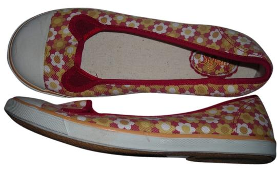 sugar red with white flowers Flats