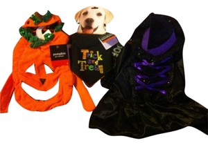 Pets Smart Dog/Cat 3 BRAND NEW HALLOWEEN COSTUMES-Retail For All $42.99