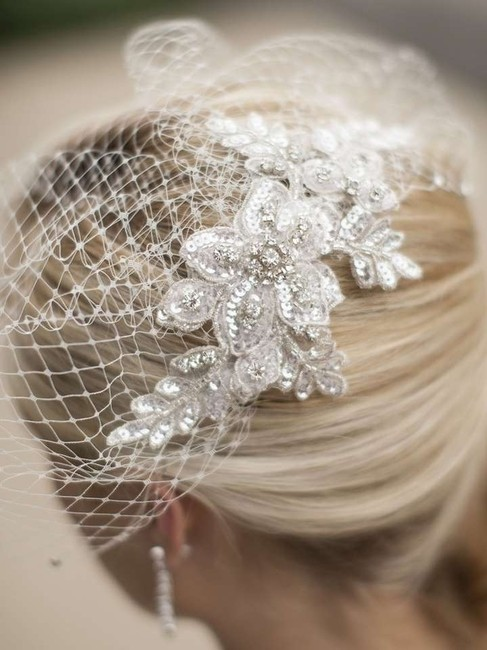 Item - Ivory/Silver Birdcage With Crystal Lace Applique Bridal Veil