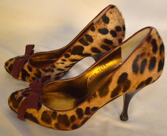 Dolce&Gabbana Party Heels D&g Heels Brown / Burgandy / Beige Pumps Image 1