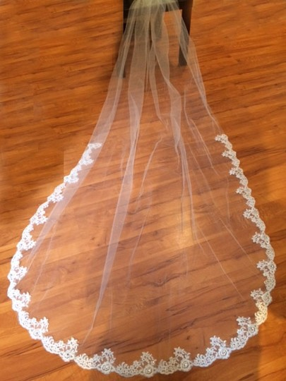 Preload https://img-static.tradesy.com/item/737321/white-long-new-cathedral-length-with-alencon-lace-bridal-veil-0-0-540-540.jpg
