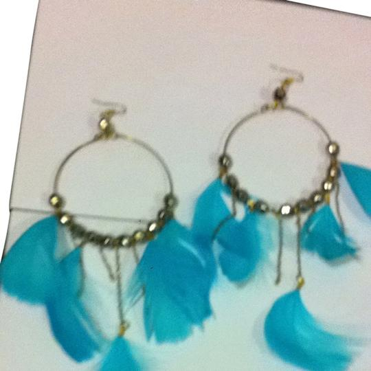 Other Large Hoop Feather And Chain Earrings